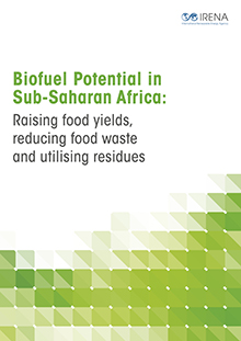 biofuel potential in pakistan Agricultural waste biomass energy potential in pakistan saeed maa,b, irshad aa,b, sattar, hc, andrews gea, phylaktou hna & gibbs bma a energy research institute, school of chemical and process engineering, university of leeds, ls2 9jt, leeds, uk.