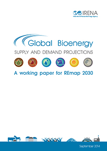 Global Bioenergy Supply and Demand Projections: A working